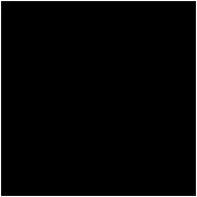 This is the restaurant logo for Dunedin New Zealand Eats