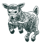 This is the restaurant logo for Black Lamb