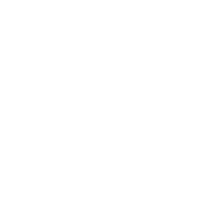 This is the restaurant logo for Taim