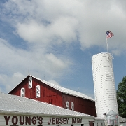 This is the restaurant logo for Young's Jersey Dairy