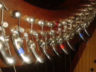 Picture of Harp from Different Angle