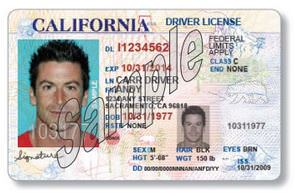 New Driver's License Category for Undocumented Immigrants in California