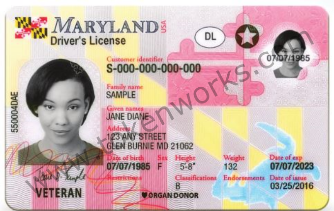 Maryland Introduces New Driver's License Design