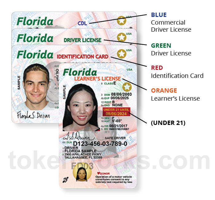 New Florida Driver's License and ID Card Design