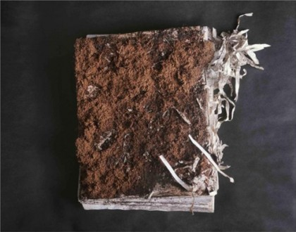 dirtybook-420x330