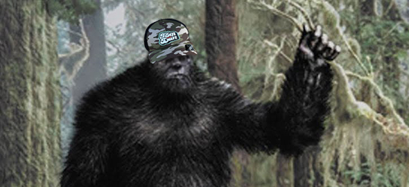 TDBIGFOOT