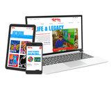 George rodrigue website