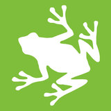 Frog logo white on green 500