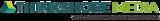 Thinkshore logo