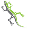 Robolizard no text logo