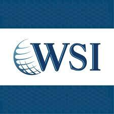 WSI Net Advantage Logo