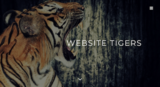 Website tigers   best web design in las vegas