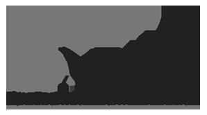 Todd Company Logo