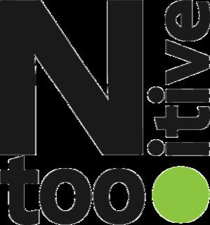 Ntooitive Logo