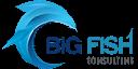 Big Fish Consulting Logo