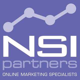 NSI Partners Logo