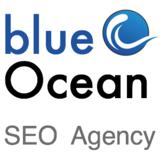 Logoblueoceansquare300x300v2