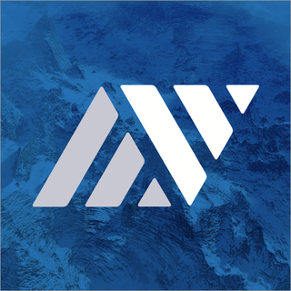 New Vista Digital Logo