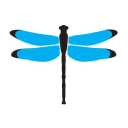 Dragonfly Digital Marketing Logo