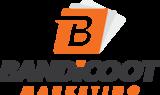 Bandicoot logo 2 web