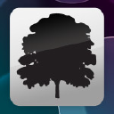 SilverTree Technology Logo
