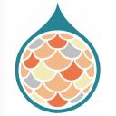 Playfish Media Logo