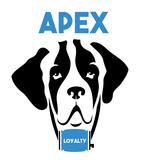 Apex kare logo