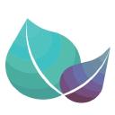 Prosper Strategies Logo