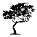 Tulip Tree Studios Logo