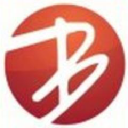 Brinks Web Solutions Logo