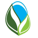 Lifebloom Creative Logo