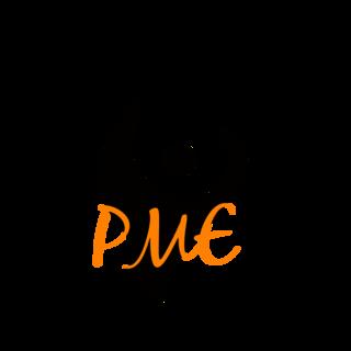 Premier Marketing Experts Logo