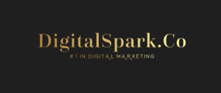 DigitalSpark.Co Logo