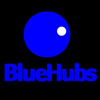 Bluehubs Logo