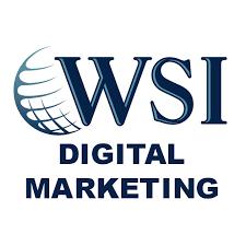 WSI eStrategies Logo
