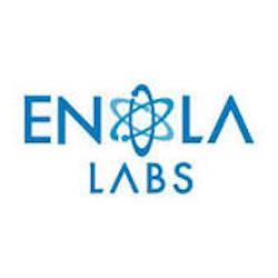 Enola Labs Software Logo