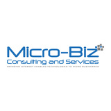 B19333 micro biz consulting and services logo rj 02