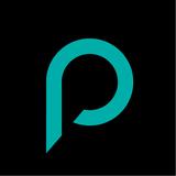 Pdi 30073 profile 01