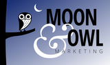 Moon and owl blue logo gradient field 750