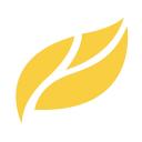 Yellow Leaf Marketing Logo