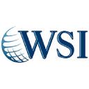 WSI World Logo