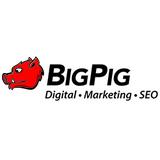 Big pig cover logo
