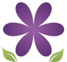 Spring Insight Marketing, LLC Logo