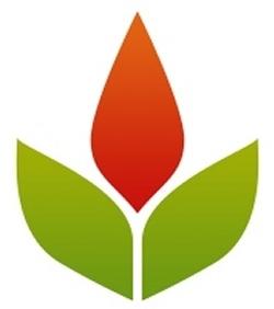 LinkHelpers Phoenix Web Design & SEO Logo