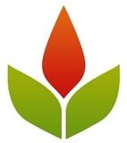 Google plus lhi logo symbol