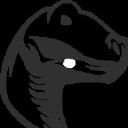 Raptor Digital Marketing Logo
