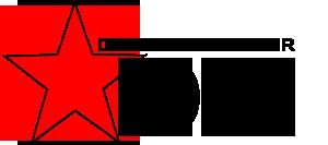 Star Digital Marketer Logo