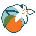 Orange Blossom Media Logo