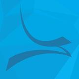 Sayenko design logo mark 2