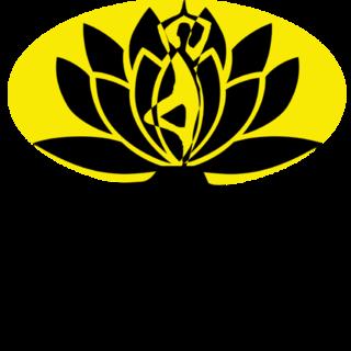 Wise SEO Logo